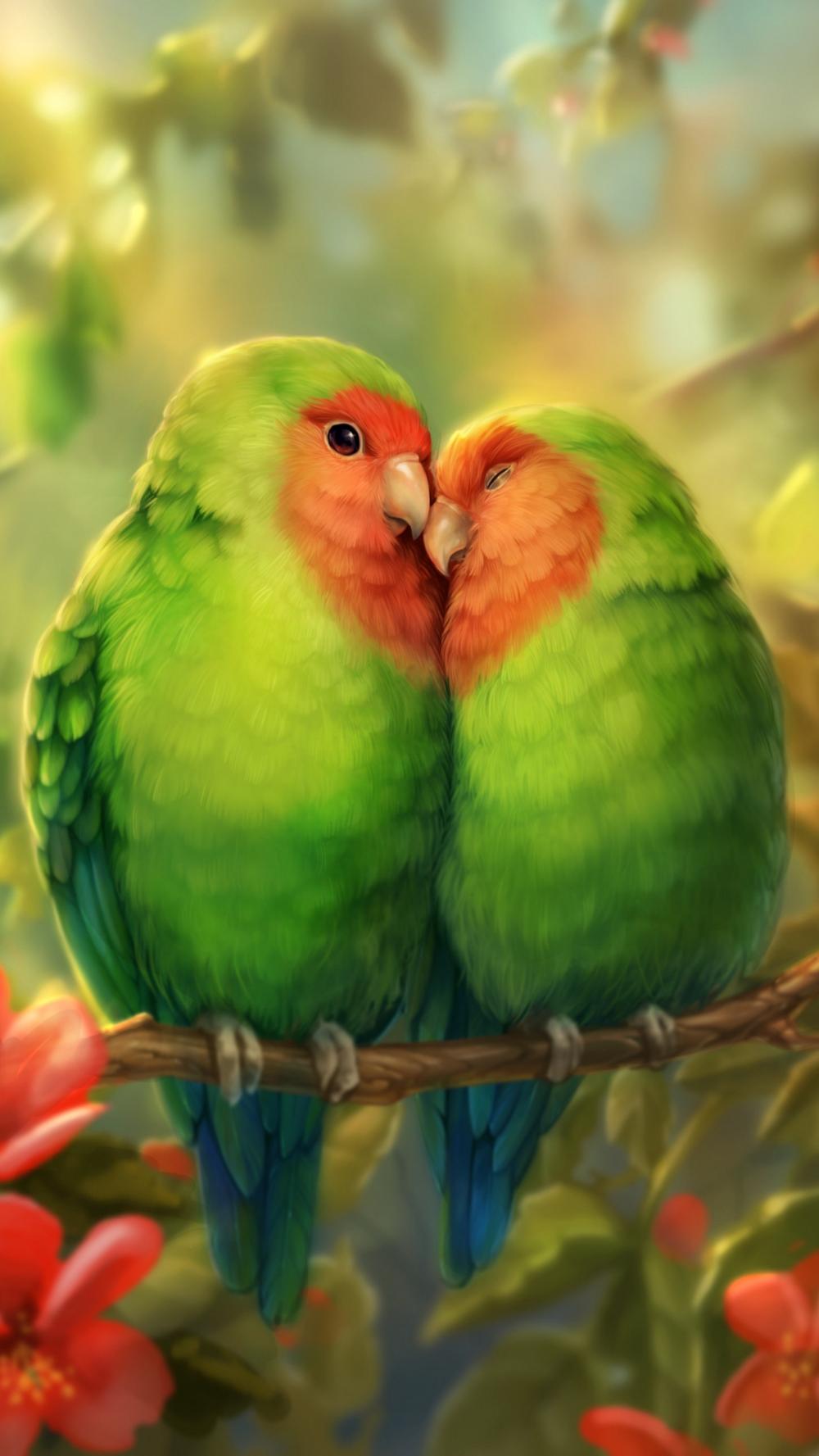 Parrots Birds Romance Cute Parrot Wallpaper Parrot Bird Wallpaper