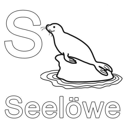 Buchstaben Lernen Kostenlose Malvorlage S Wie Seelöwe Zum Ausmalen