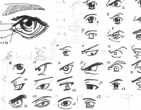 Drawing Reference Manga 2019 In 2020 How To Draw Anime Eyes Eye Drawing Cartoon Eyes Drawing