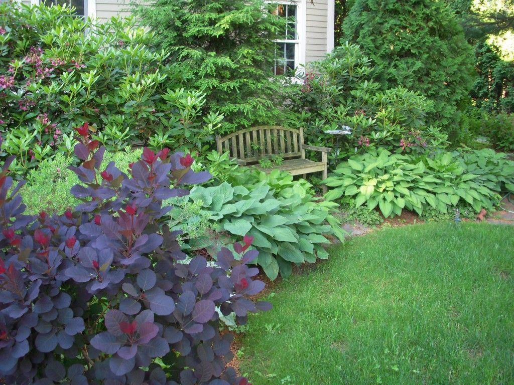 Planting Different Types Of Plants In A Layered Design Creates A More Natural Looking Barrier Descri Fall Landscaping Garden Landscape Design Easy Landscaping