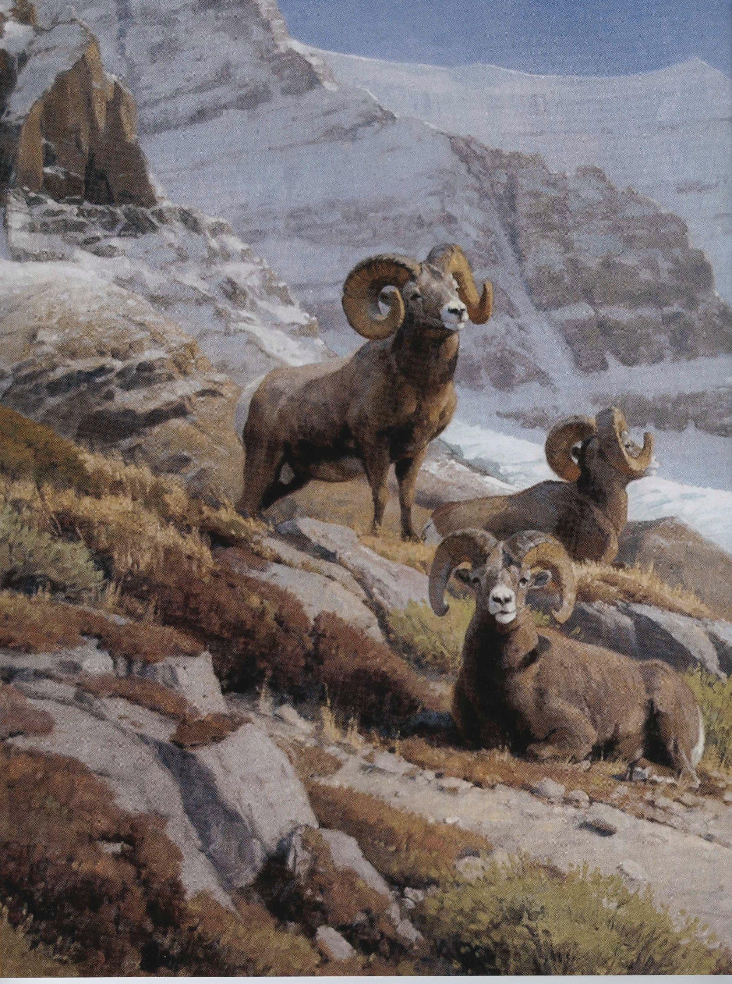 Larry Zach Wildlife Art Artist