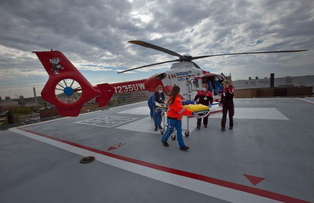 13++ Madison animal care hospital images
