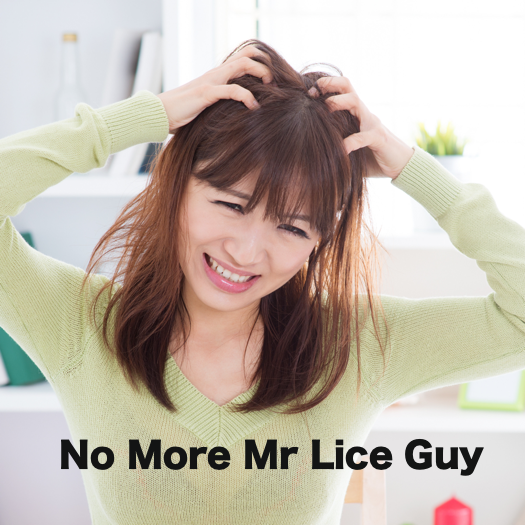 No More Mr Lice Guy Lice Removal Guys Beautiful Cats