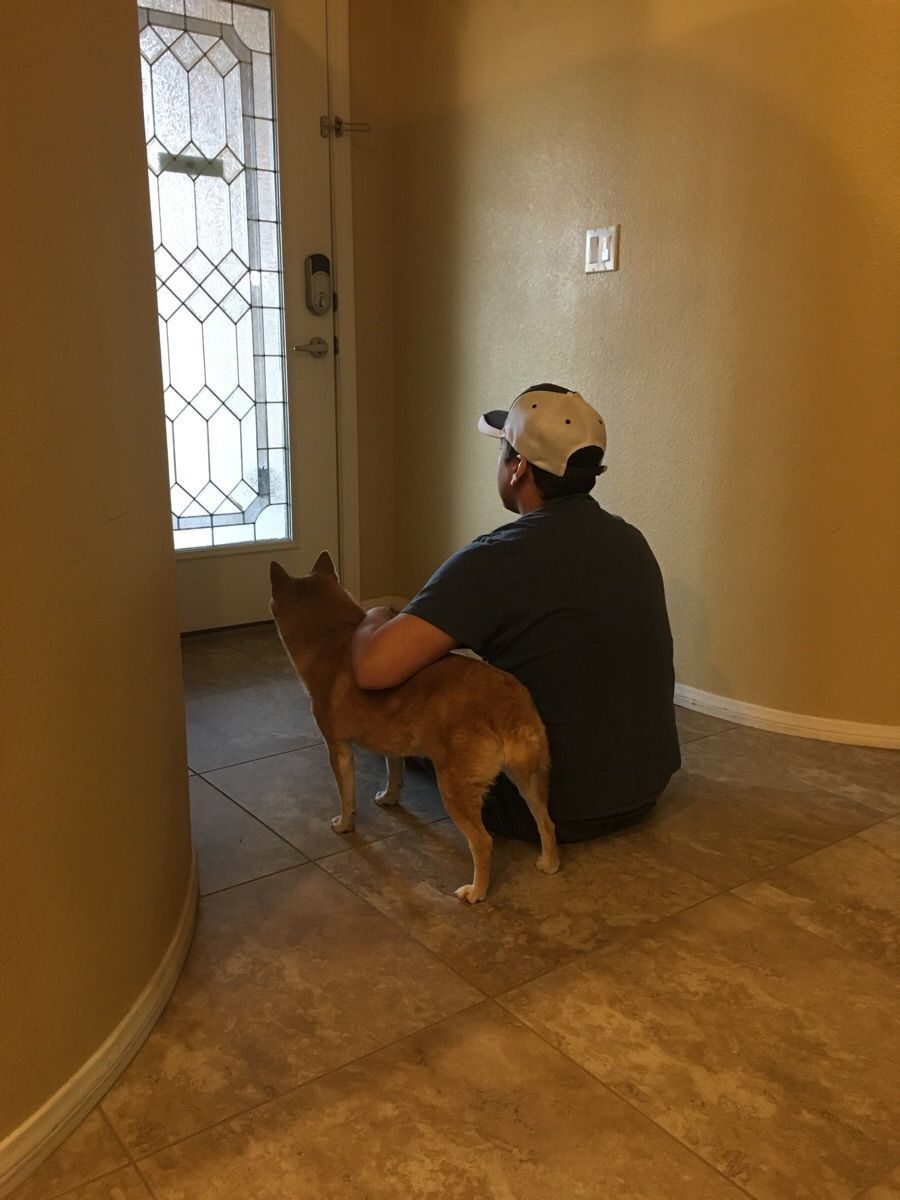 Husband and dog waiting for the mailman