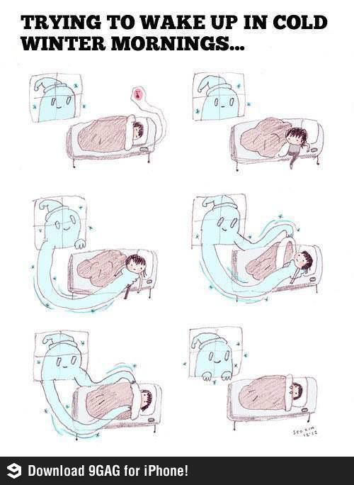 Trying To Wake Up In Cold Winter Mornings Funny Pictures Humor Hilarious