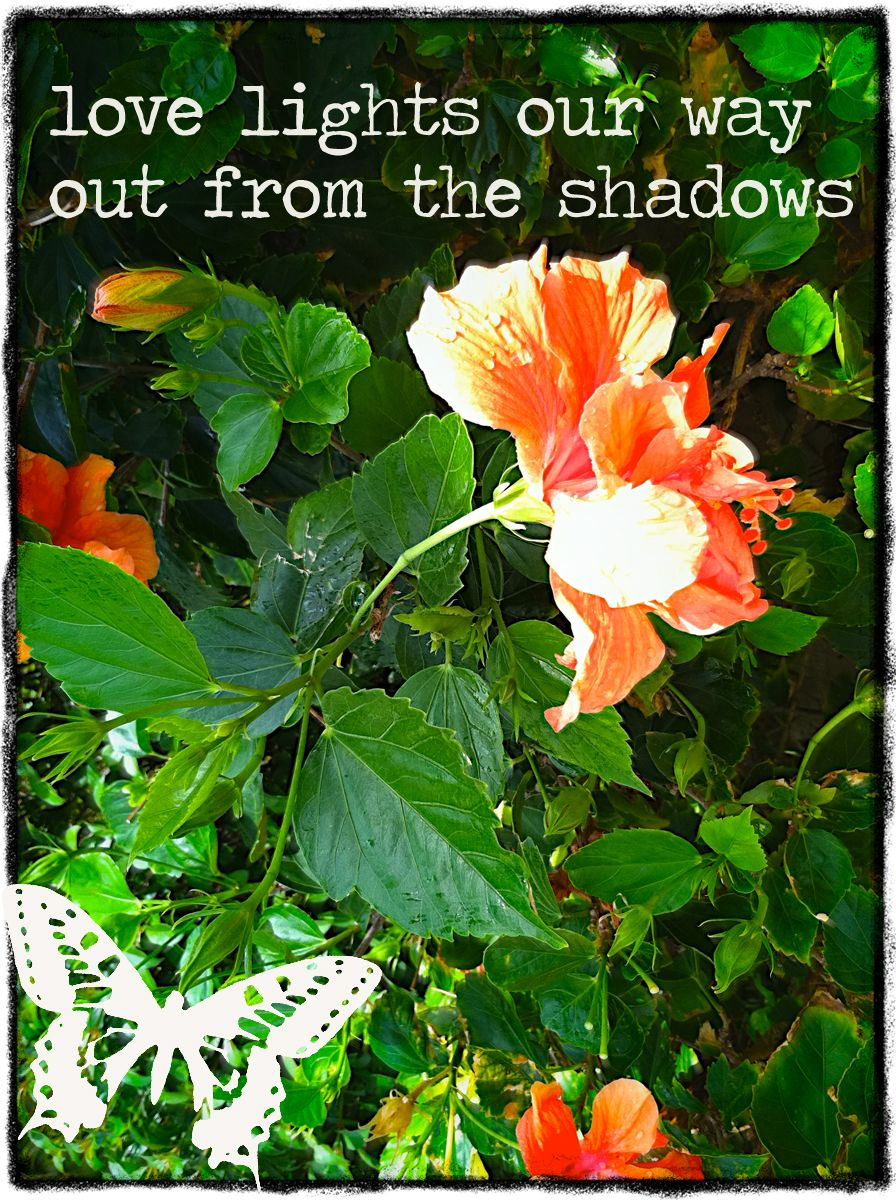 ♥ love lights our way out from the shadows ♥