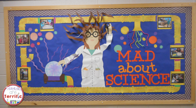 6th Grade Science Classroom Decorations : Th grade science bulletin board ideas images about