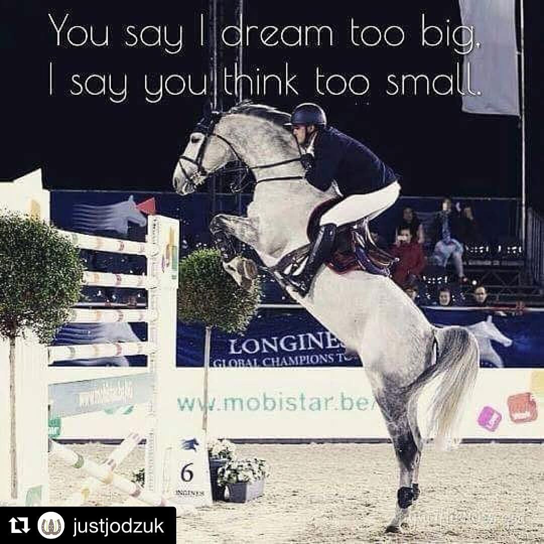 2019 year for lady- Jumping Horse quotes pictures