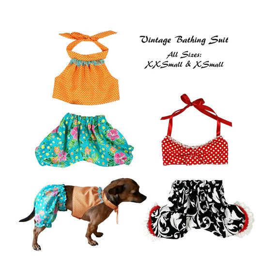 Vintage Dog Bathing Suit Pattern All Sizes Dog Clothes Sewing