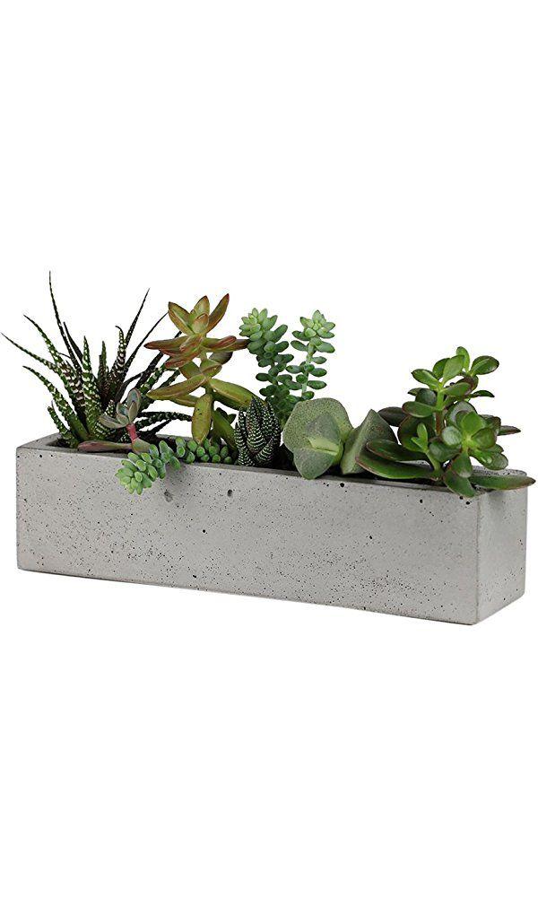 Scoutmob Home Concrete Windowsill Planter Best Price