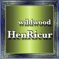 "6381  Wildwood by Heinz Hoffmann ""HenRicur"" on SoundCloud"