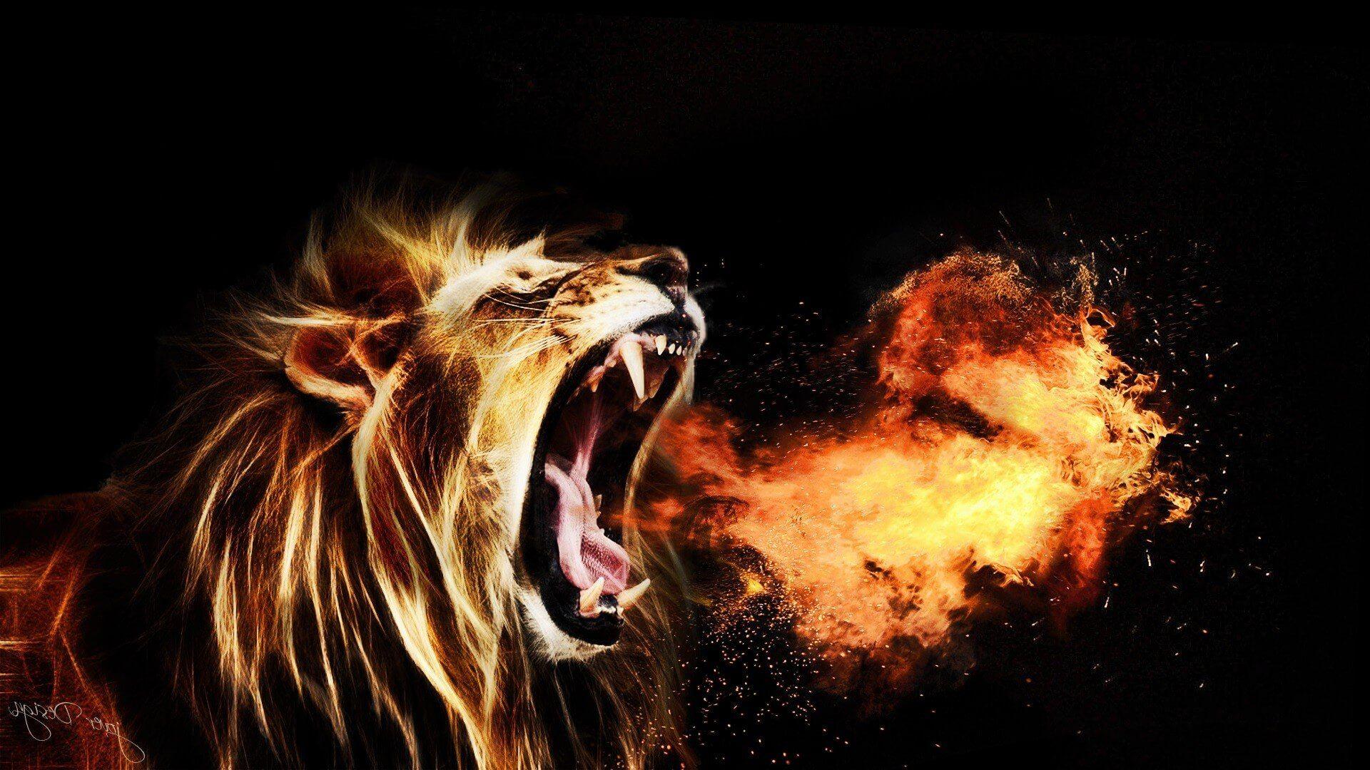 Lion Wallpapers 19201080 Lion Wallpapers Lion Wallpaper Fire Lion