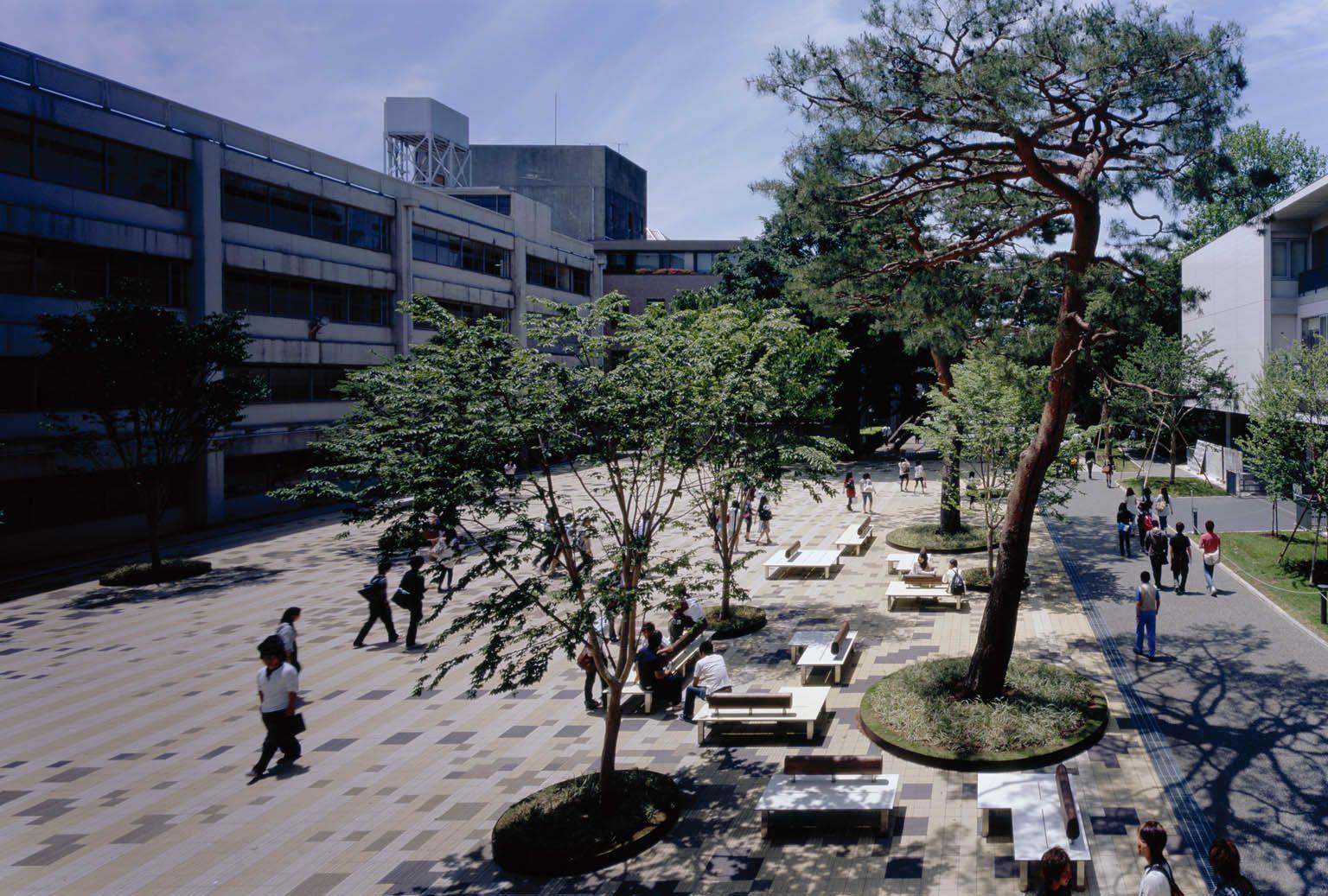 大学 成城