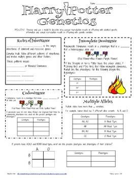 The NIH has a great unit on genetics using characters from Harry Potter. I wanted the practice pages to be more like guided notes so I made a few formatting changes. These notes follow along with Lesson 2. The entire unit is available to download at: http