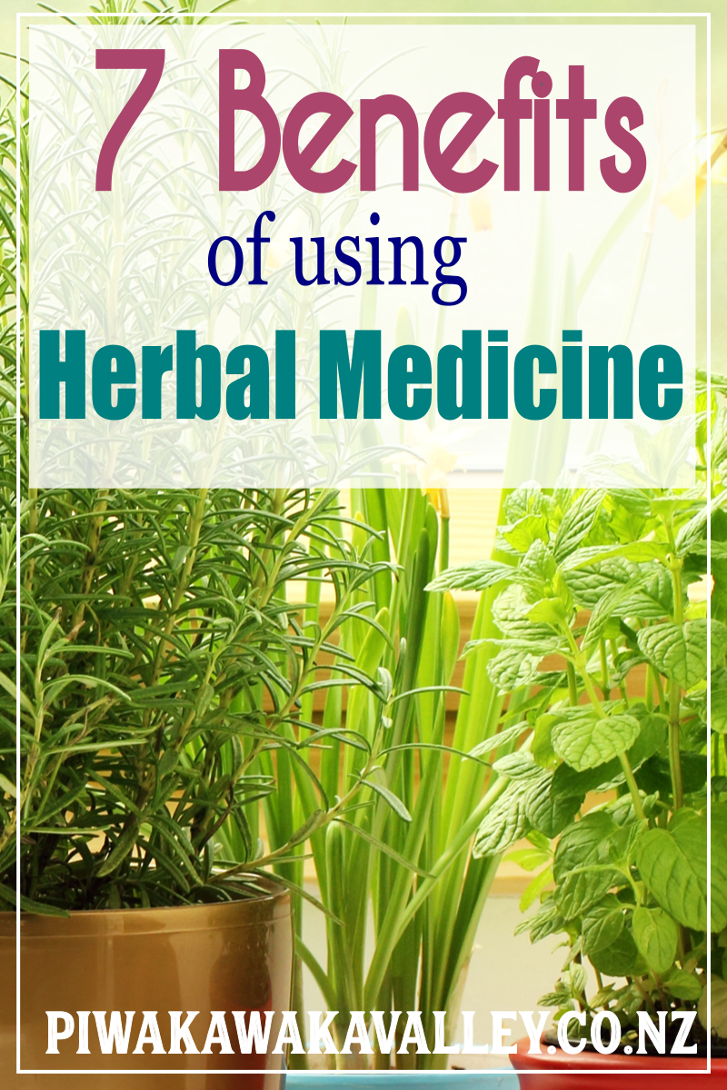 7 Benefits of Herbal Medicine The risks and benefits of
