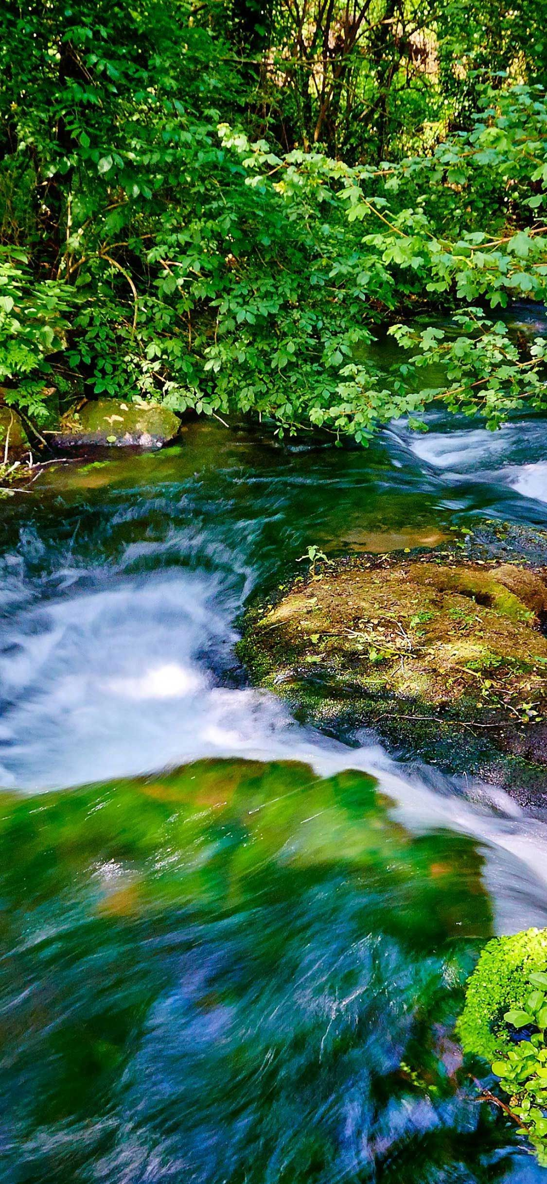 Iphone X Wallpaper Water Stream Forest K Hd In 2020 Best Nature Wallpapers Nature Wallpaper Wallpaper