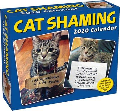 Cat Shaming 2020 Desk Calendar -