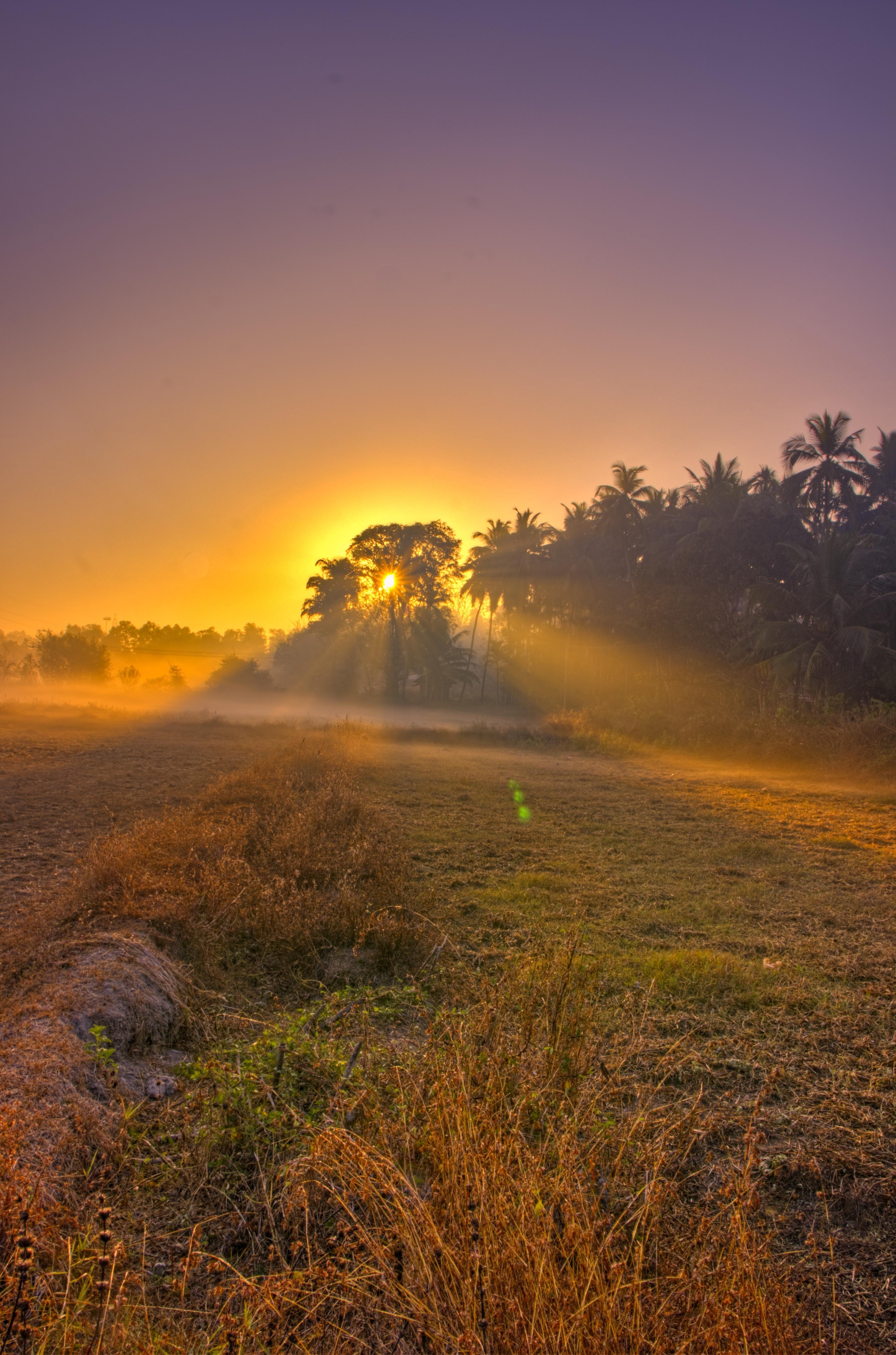 Sunrise At Padoor Village Udupi India Oc 3422x5175 Http Bit Ly 2p2nuum Beautiful Images Nature Beautiful Nature Cool Landscapes