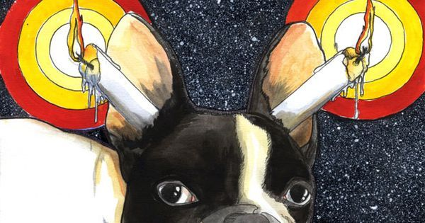 French Bulldog, Jeroen Teunen, (relax, candles in the Ears is an everyday thing in Europe ; ) | Fabulous French Bulldogs & Boston Terriers | Pinterest | Franzö…