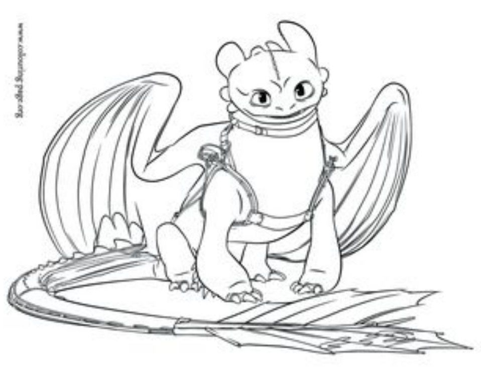 Toothless Coloring Page Dragons Other Mythical Creatures