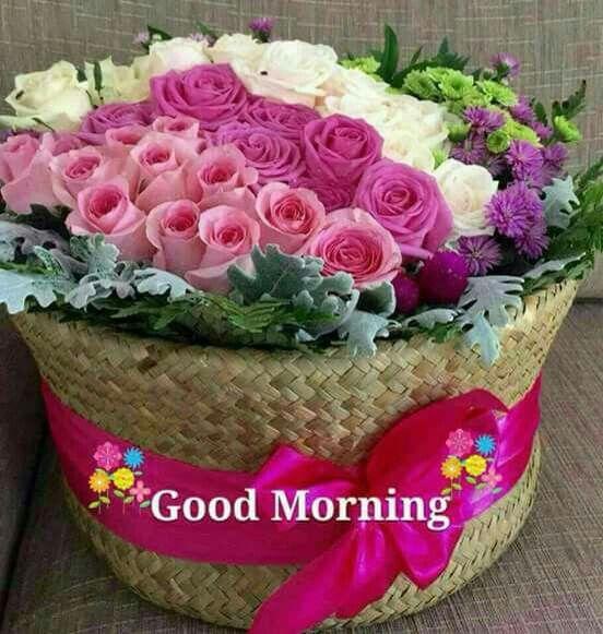 Good Morning Ji Good Morning Quotes Good Morning Morning