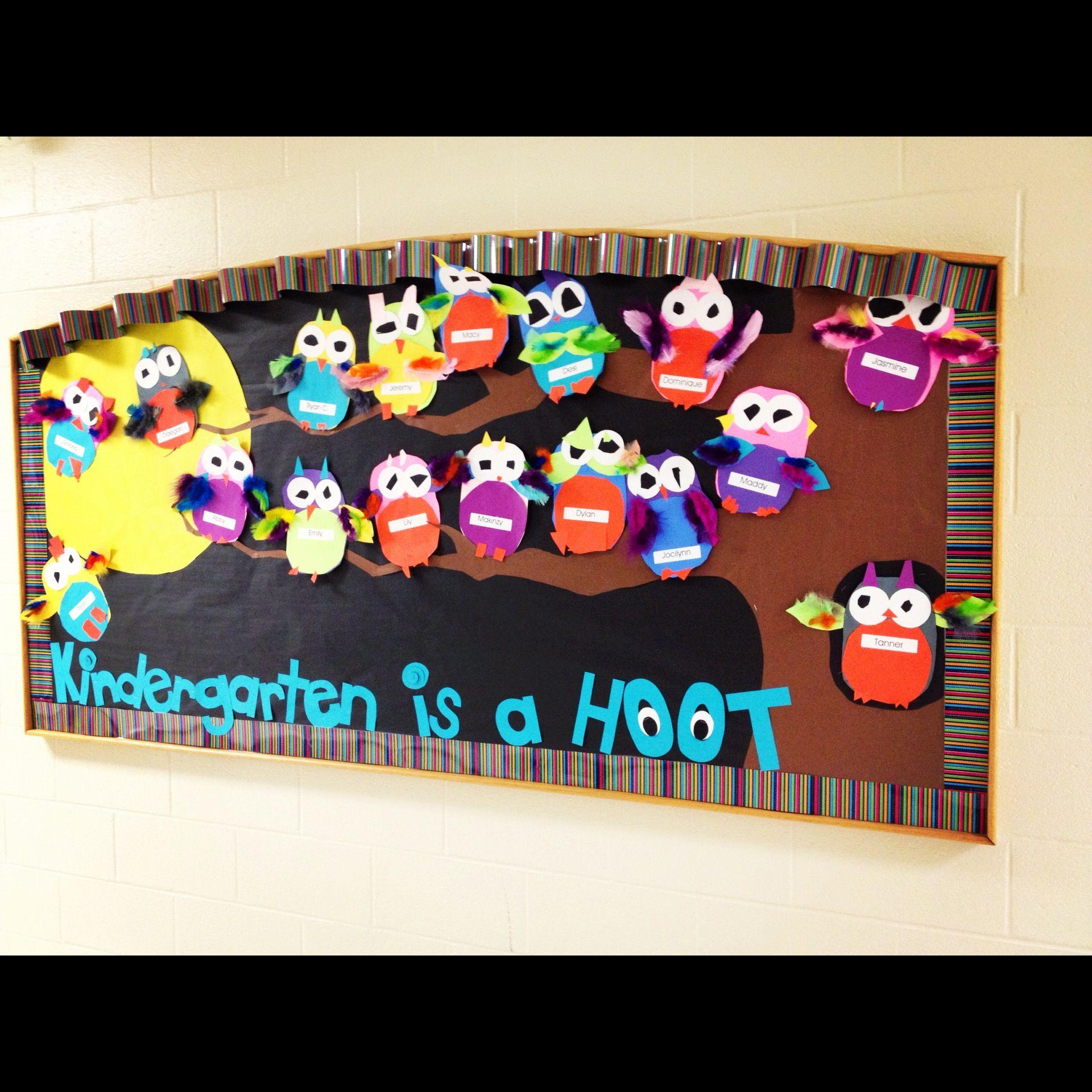 Owl Theme Classroom, Owl Bulletin