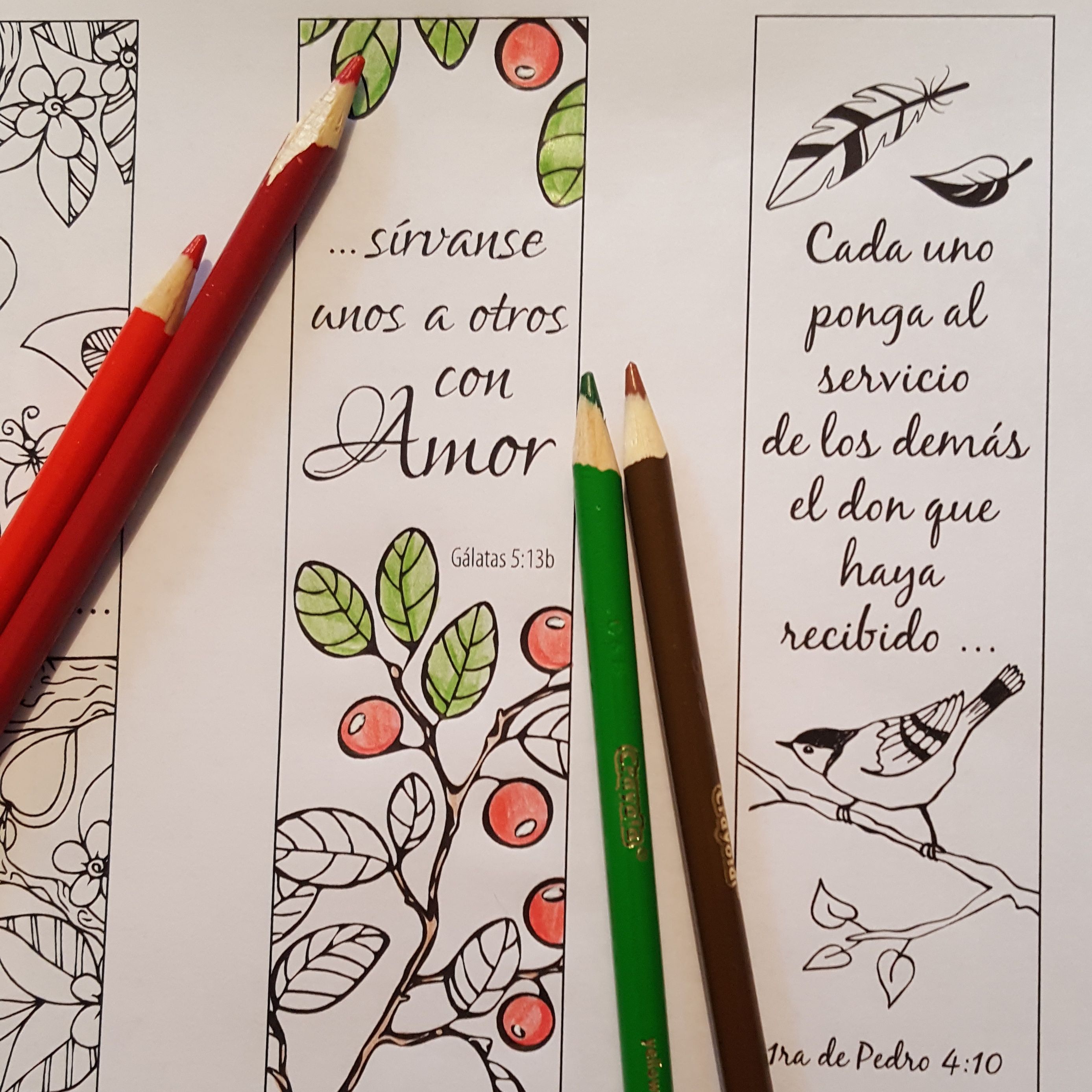 Set of four LWML coloring bookmarks in Spanish | LWML Crafts and ...