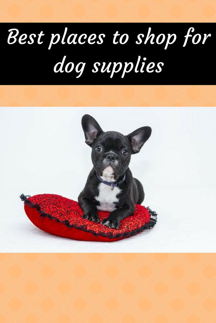 Best Places To Buy For Dog Supplies Pet Supplies Dog Trainer