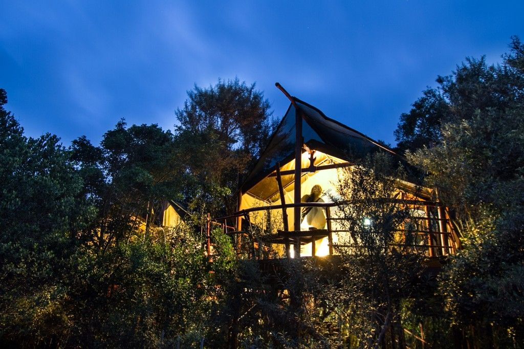 The Best Treehouse Restaurants, Hotels, and Places to Stay