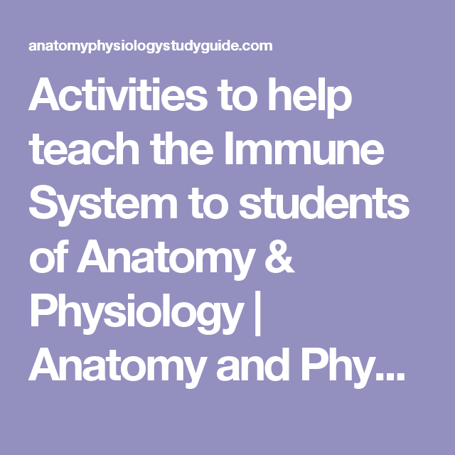 Activities to help teach the Immune System to students of Anatomy ...