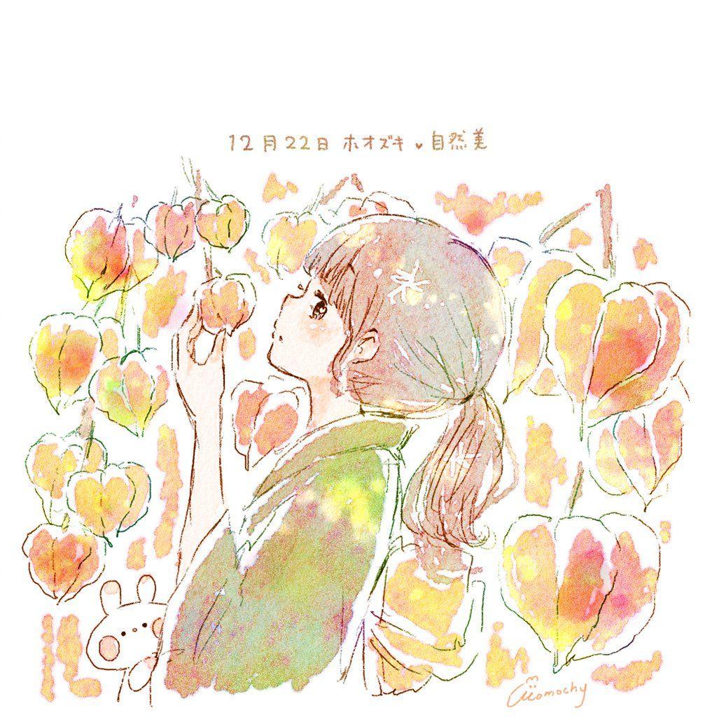 ホオズキ(鬼灯)の花言葉【12月22日の誕生花】フリーアイコン配布 ...