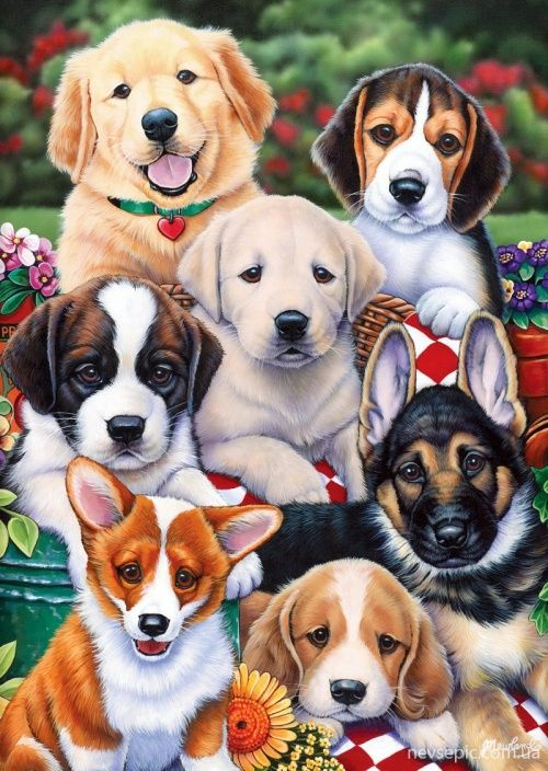 Jenny Newland Cute Little Puppies Animal Drawings Cute Dogs