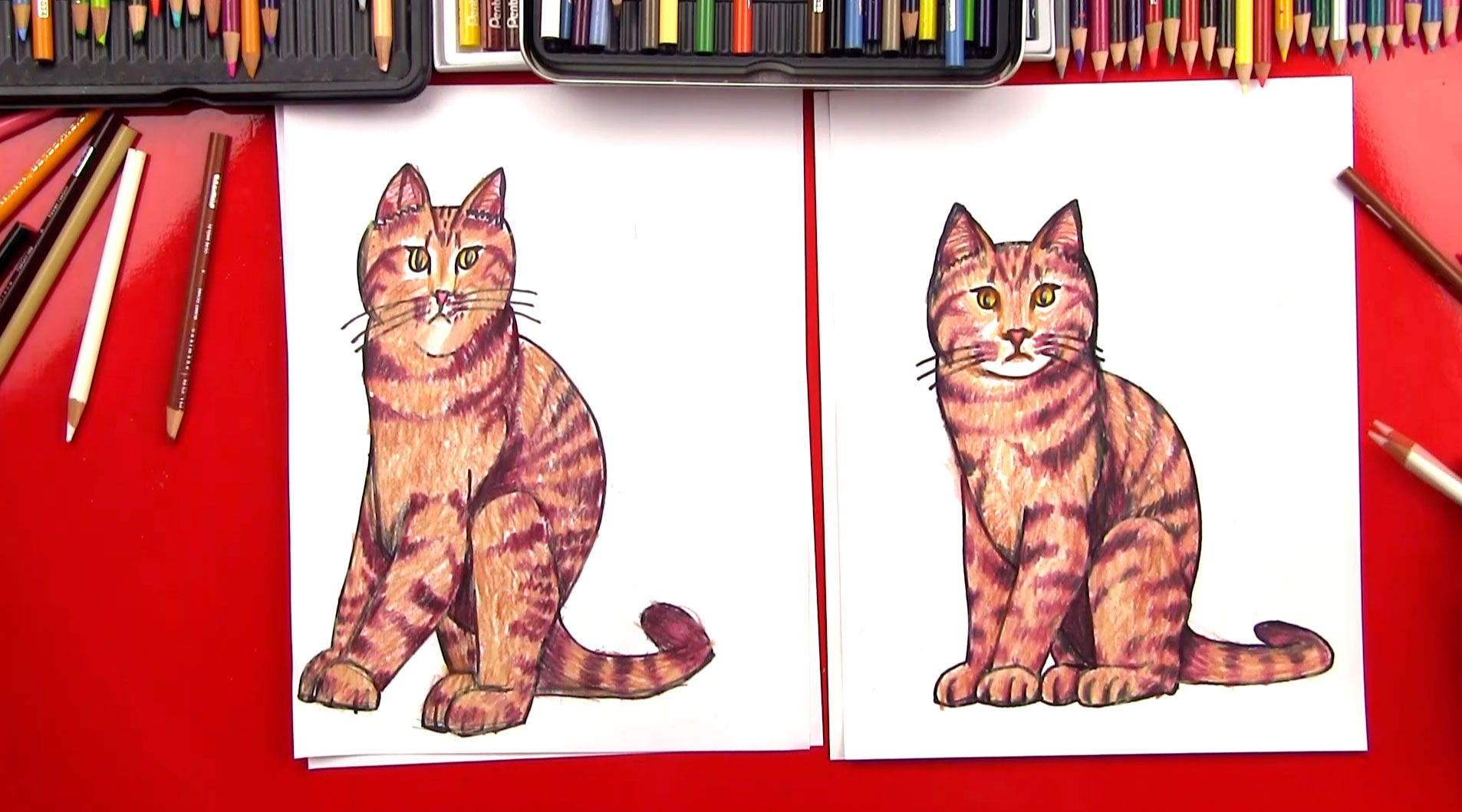 How to draw a realistic cat art for kids hub art for