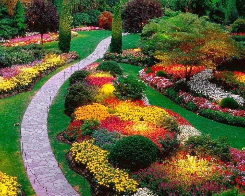 JARDIN CON FLORES | Jardinería ~ Cultivo y Reproducción | Pinterest ...