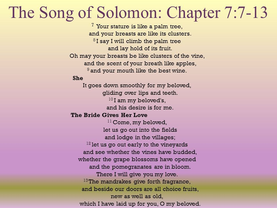 Song Of Solomon The Love Poem For Married S