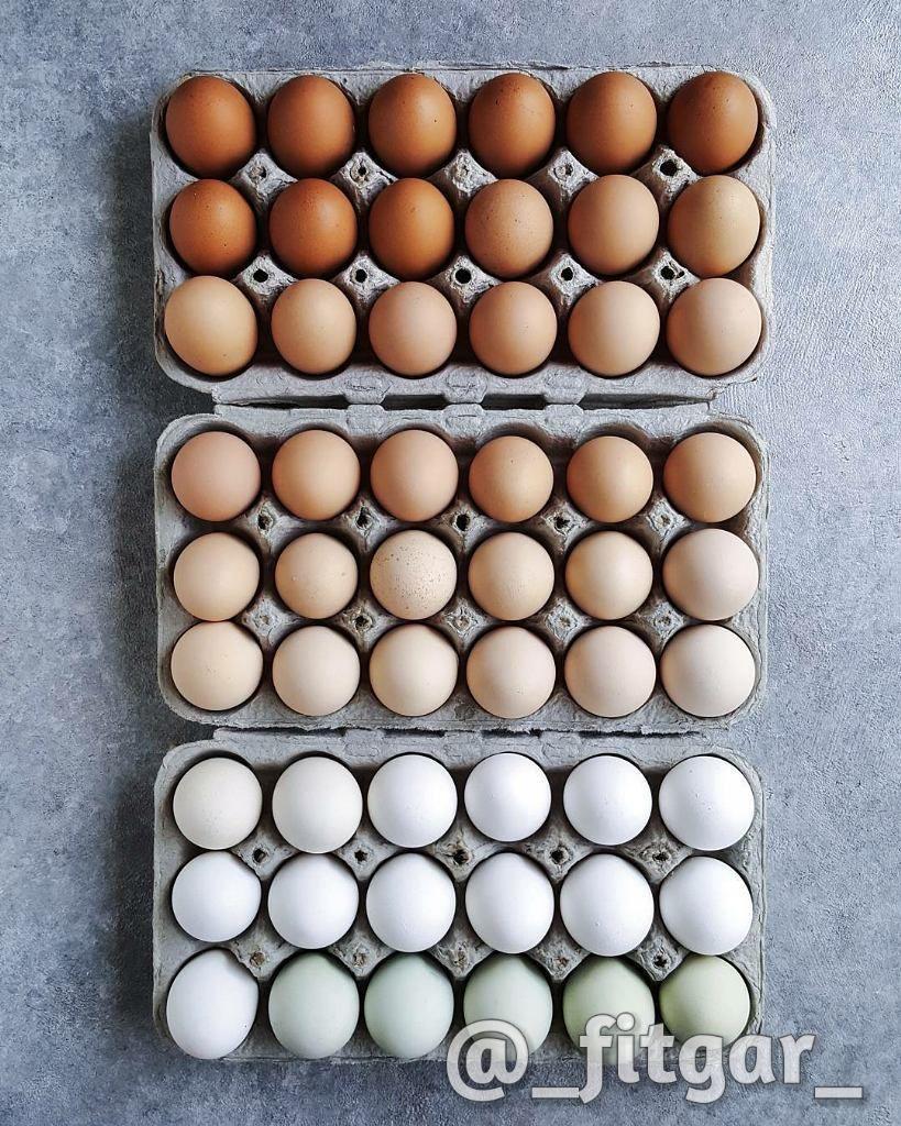 """:تخم مرغ تخم مرغ ها معمولا"""" یکی از غذاهای سرشار از کالری  کلسترول و چربی محسوب می شوند و به همین دلیل افرادی که قصد دارند رژیم بگیرند و لاغر شوند معمولا"""" از آن دوری می کنند اما اگر سفیده تخم مرغ از زرده جدا شده و به تنهایی مصرف شود  کالری و کلسترول بسیار کمی دارد و منبع بسیار خوبی برای تامین پروتئین و اسید آمینه محسوب می شود. به همین دلیل در بسیاری از رژیم های غذایی استفاده از سفیده تخم مرغ توصیه می شود زیرا کالری بسیار کمی دارند ومزایای بسیار زیادی برای سلامت انسان دارند. #تخم_مرغ#فیتگر"""