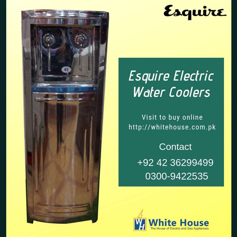 Buy esquire electric water Coolers online at the best