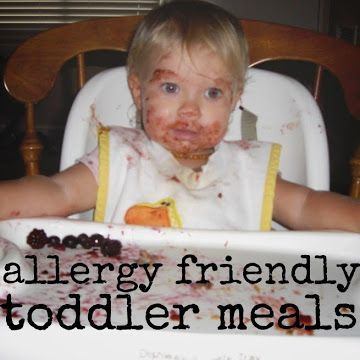 Gluten Dairy And Soy Free Breakfast Lunch Dinner Ideas For Toddlers With Food