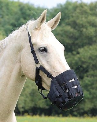 Grazing Muzzles 183417: Shires Comfort Grazing Muzzle Baby Blue Pony -> BUY IT NOW ONLY: $32.99 on eBay!