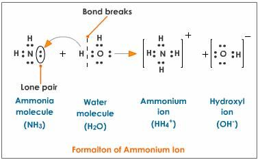 Formation Of Ammonium Ion Acids Bases And Salts Dissociation Molecules
