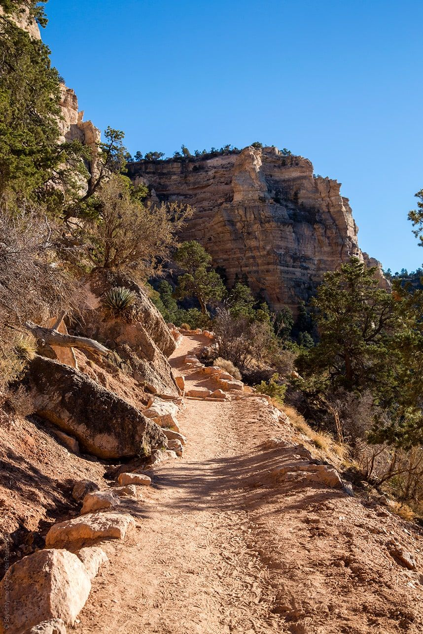 The Perfect Day Trip to the Grand Canyon South Rim #grandcanyon