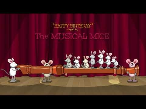 Happy Birthday played by The Musical Mice - on the recorder
