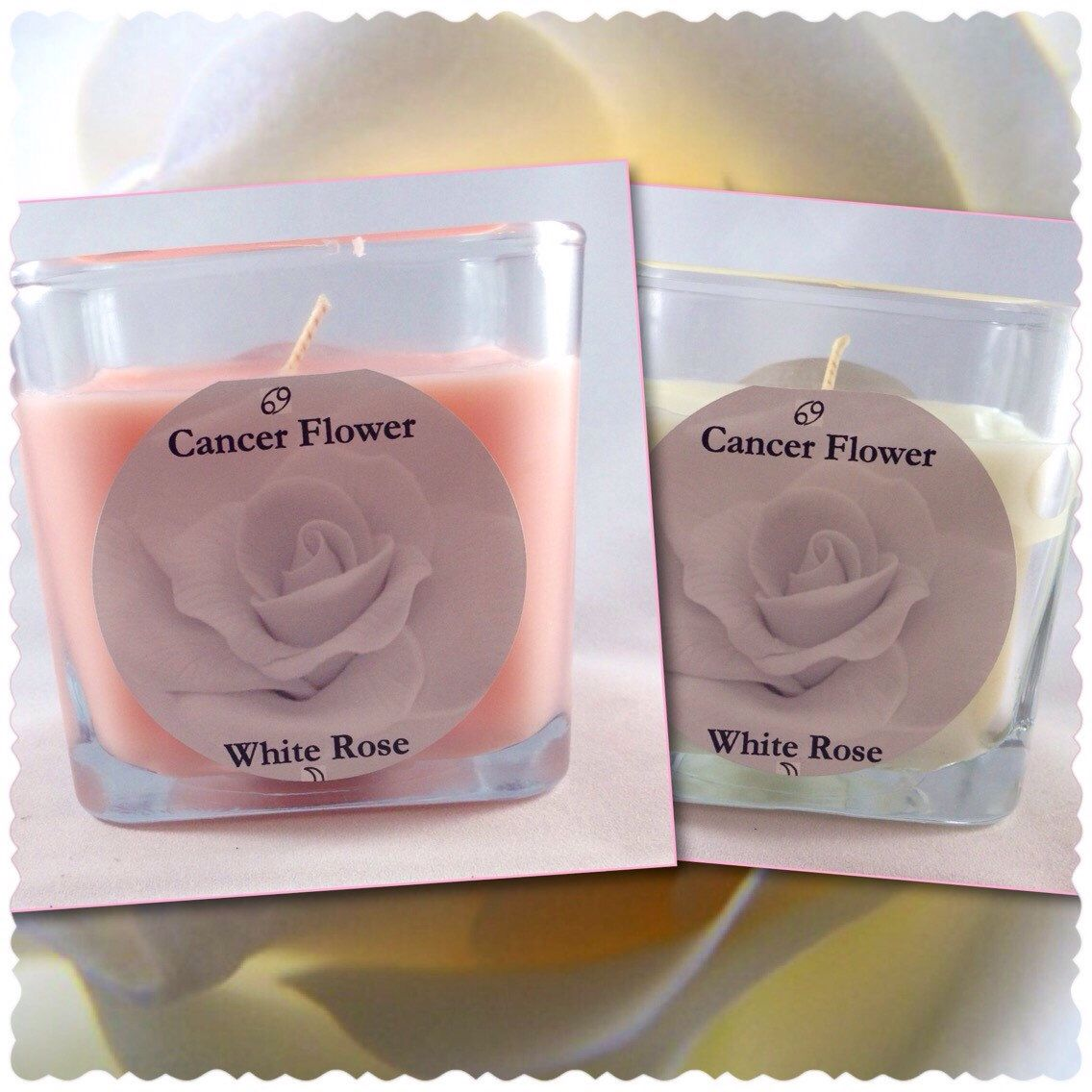 A personal favorite from my Etsy shop https://www.etsy.com/listing/203692916/cancer-rose-zodiac-candle-dusky-rose