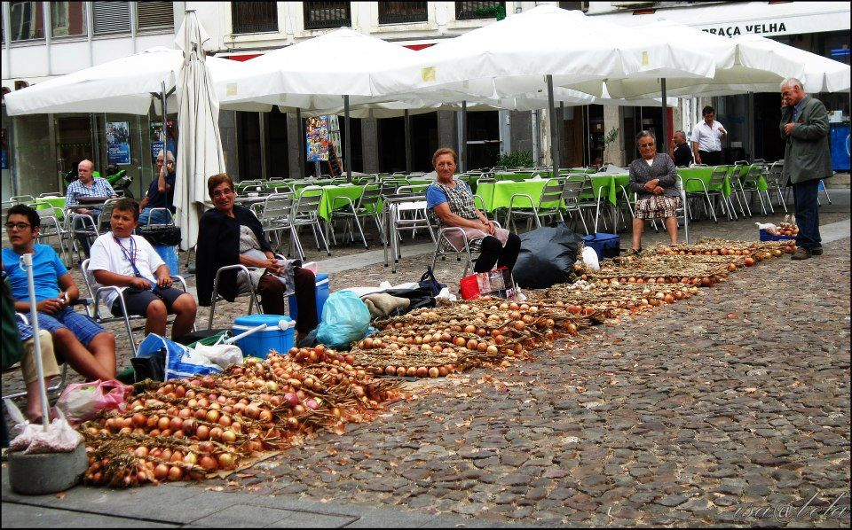 Onions free-market 21-28 August, Coimbra, Portugal