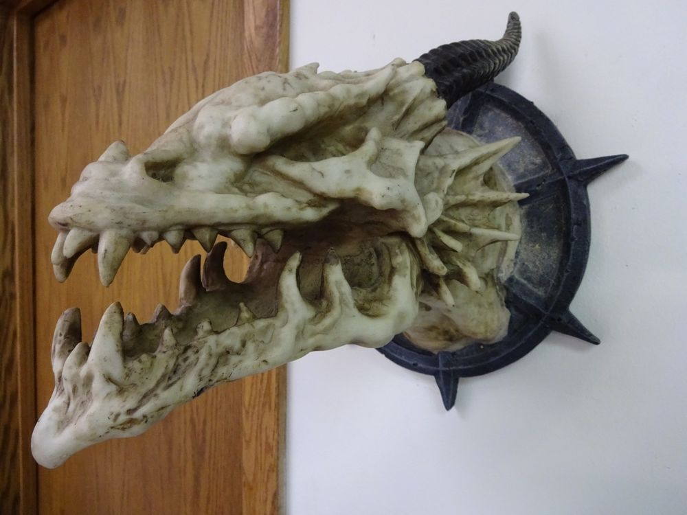 Fantasy Mythical Folklore Horned Dragon Skull Wall Mounted Trophy