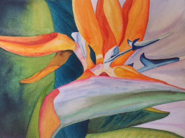 """""""Ave del Paraiso"""" Watercolor By: E. Luna"""