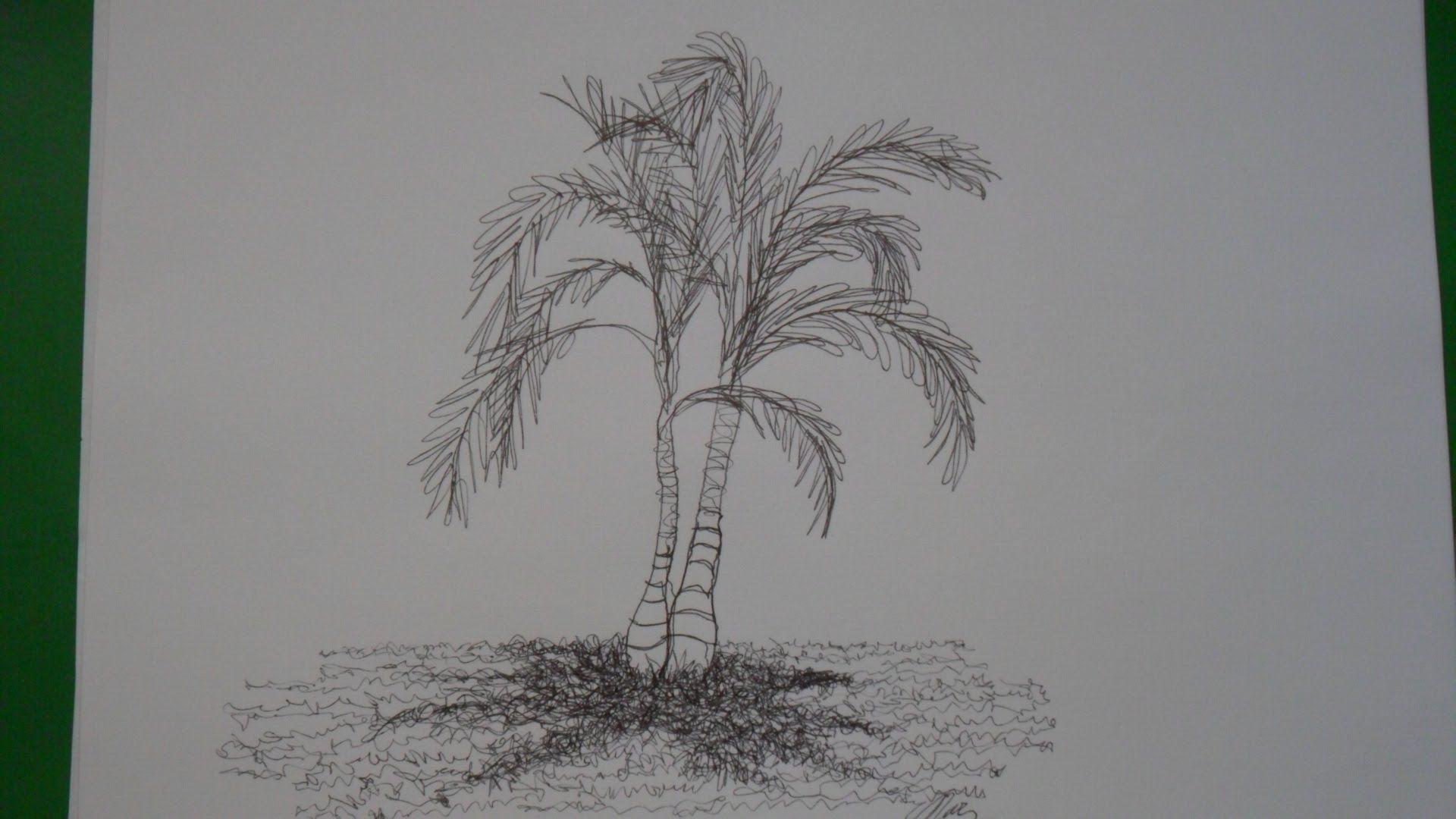 Dibujo de una sola línea. Dibujo de una palma. (dib… | VIDEOS aprèn ...