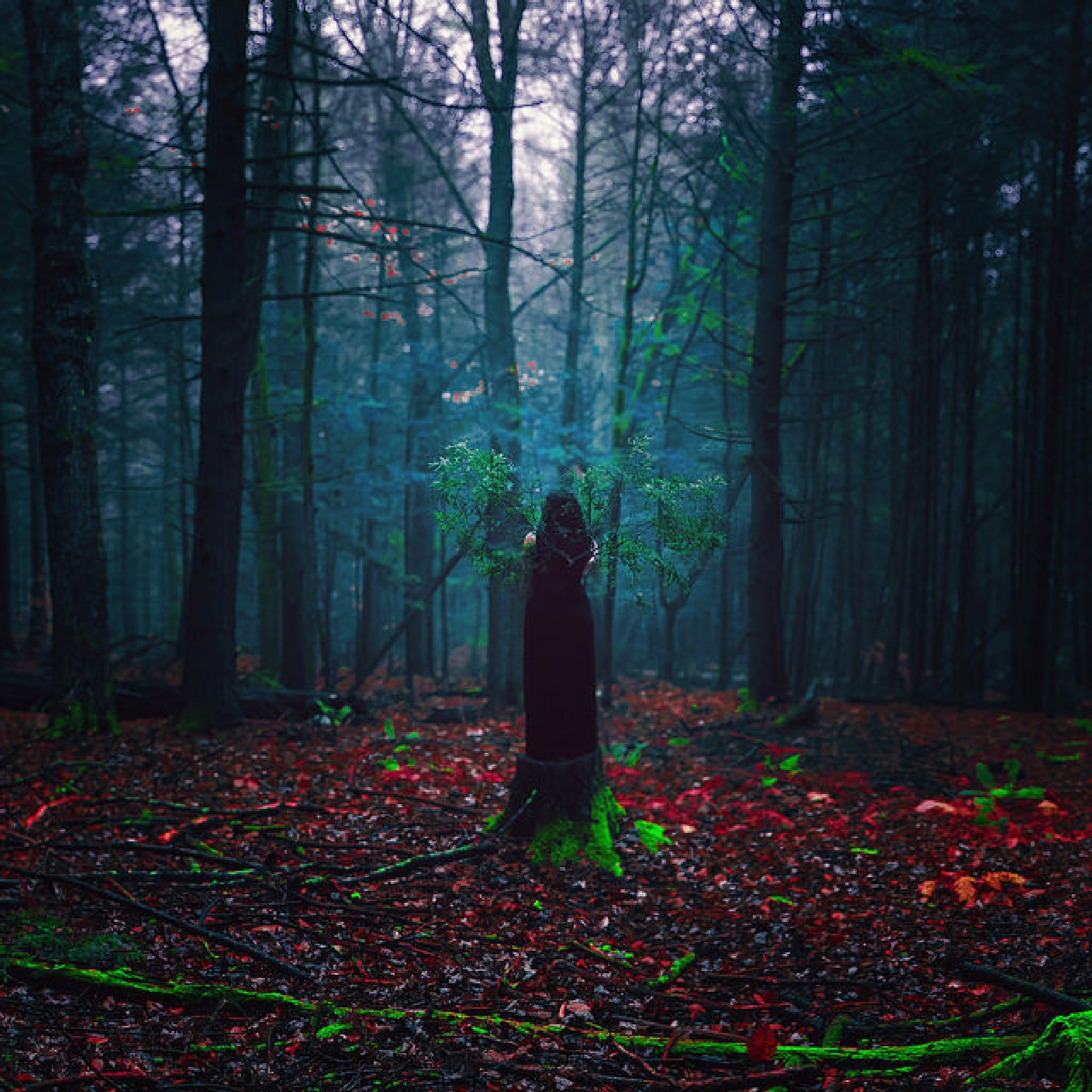 Mystical and truly creative photography by Sarah Ann Loreth - https://youpic.com/image/5393981 #YouPic #photography #fineart #inspiration