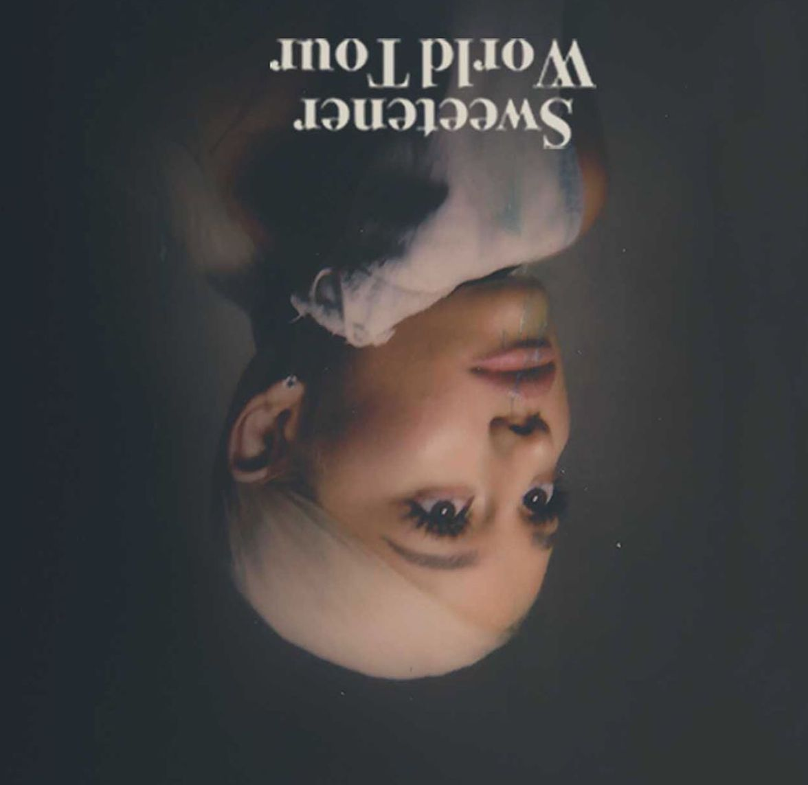 Happh 1 Year To The Sweetenr Tour In 2020 Ariana Grande