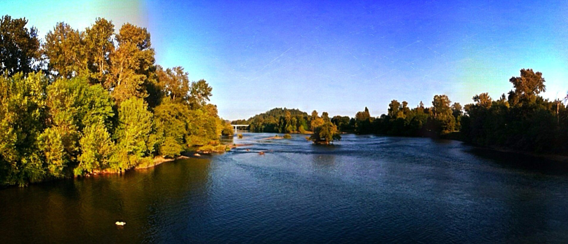 Willamette River bike trail Eugene OR Top